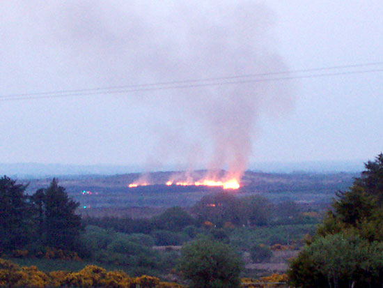 cappagh-fire-1.jpg