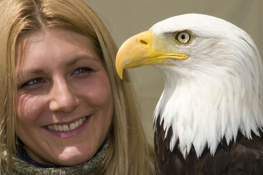 www.eaglesflying.com_1.jpg