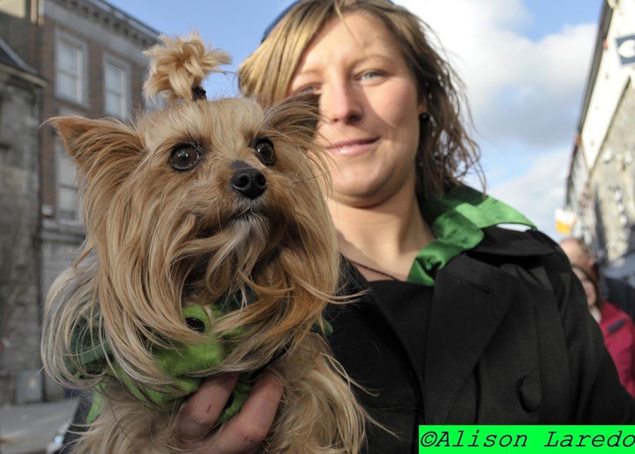 St_Patrick_s_Day_Parade_Castlebar_by_Alison_Laredo_24.jpg