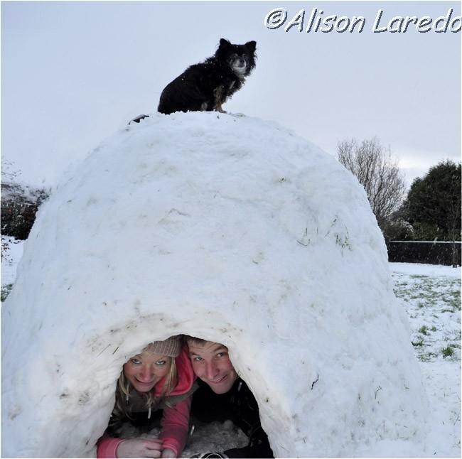 Winter_by_www.alisonlaredo.com_14.jpg