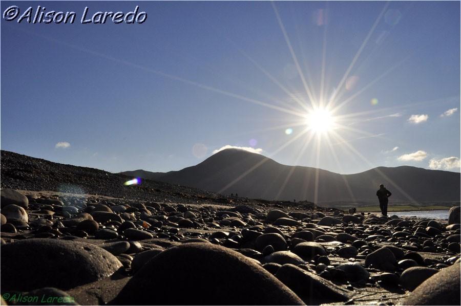 Winter_by_www.alisonlaredo.com_4.jpg