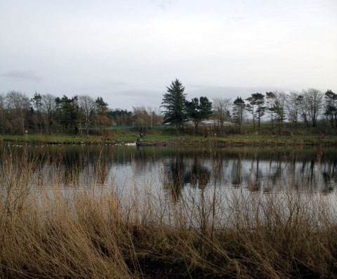 lough_lannagh_walk_2.jpg