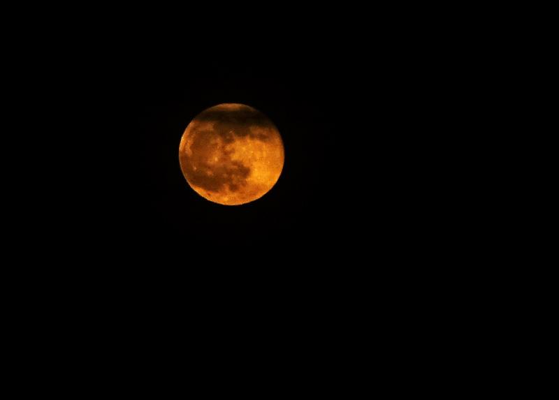 moon-20140414-DSC01214.jpg