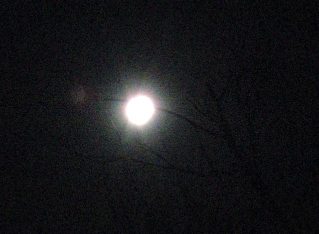 moon_eclipse_20091231_1924_PC314189.jpg