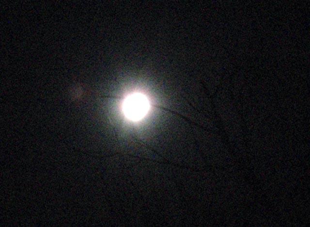 moon_eclipse_20091231_1924_PC314189.jpg