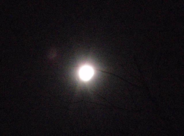 moon_eclipse_20091231_1925_PC314190.jpg