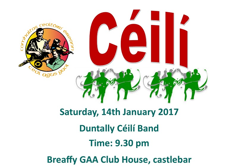 Annalee_Ceili_Band_January_Poster.jpg