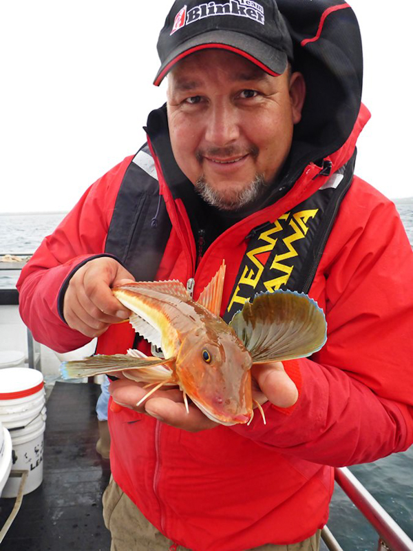 Arne_Seiberlich_Germany_with_a_nice_tub_gurnard_from_Killala_Bay.jpg
