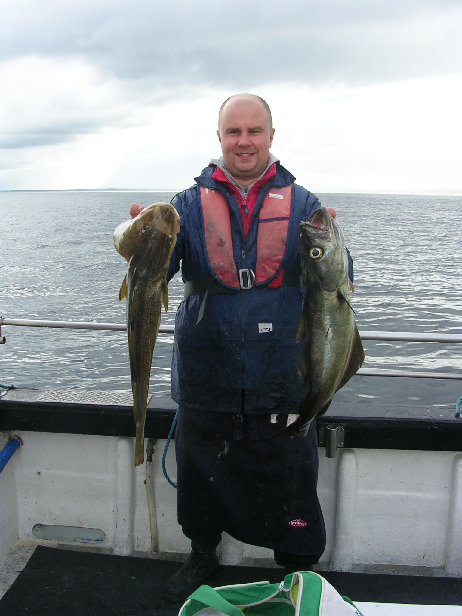 Fine_cod_and_pollack_from_Killal_Bay.JPG