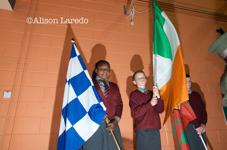 Tricolour_Breaffy_by_Alison_Laredo_8.jpg