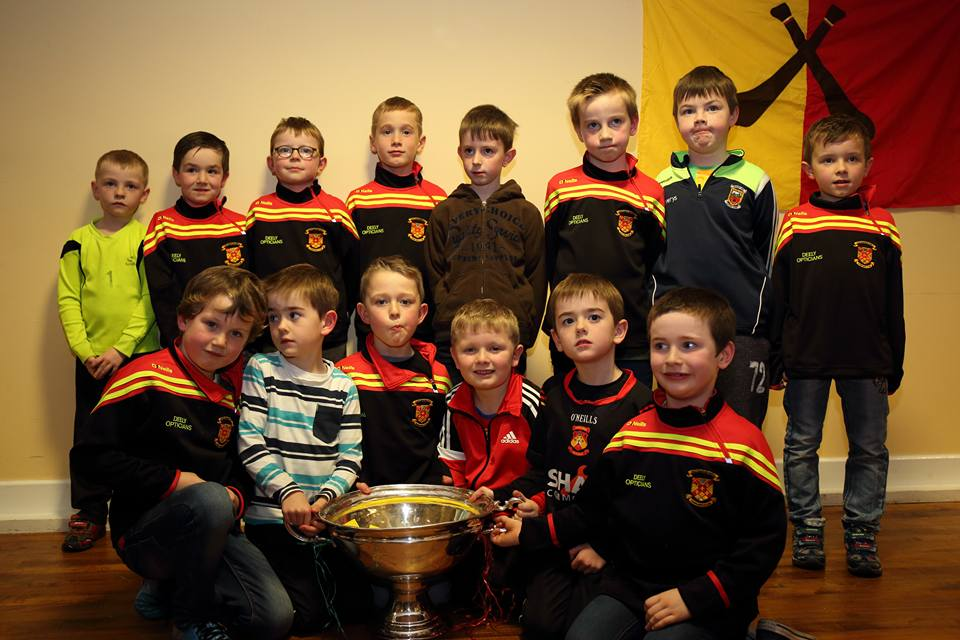 u8_hurlers_with_and_the_nicky_rackard_cup_at_presenatation_night_2016.jpg