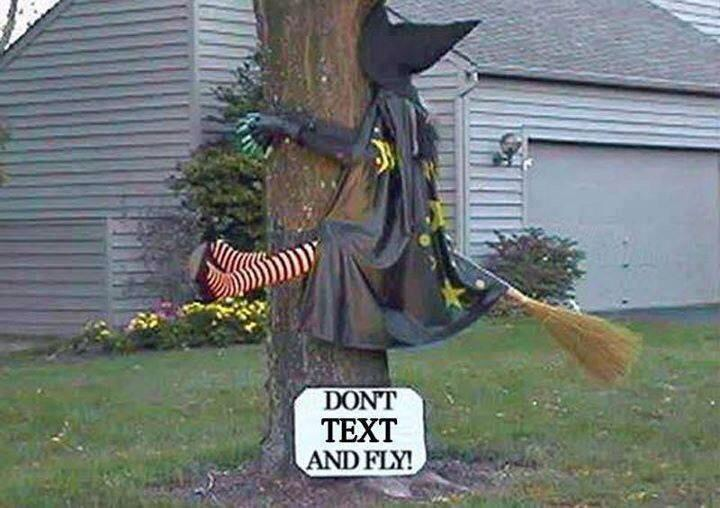 witch_flying_into_tree.jpg