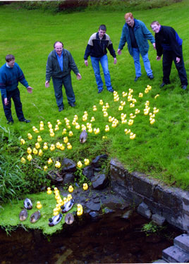 Picture of Turlough Commumnity Duck Race 2000
