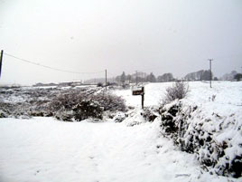 Tommy Regan uploaded some snowy photos taken just before Christmas. Click on photo for more.
