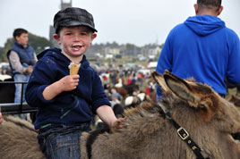 Alison Laredo has a great gallery of photos from the Ballinasloe October Fair. Click on photo for more.