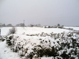 The Age of Shivery - Tommy Regan has some snowy photos. Click on photo for more from his gallery.