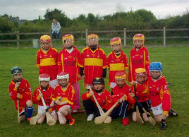 Castlebar U8 Hurling Team in Ballyvary recently. Click on photo for all the latest hurling news from Tony Stakelum.