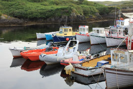 Tranquil quayside photos from Donegal submitted via our contributor login. Click on photo to view gallery.
