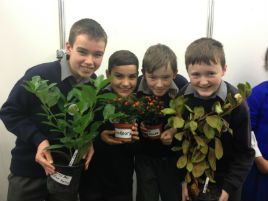 Crimlin NS students participated in the RDS Primary School Science Fair. Click on photo for details.