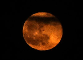 The moon had a distinct orange tinge to it last night - click on photo to view.